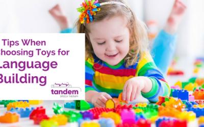 5 Tips When Choosing Toys