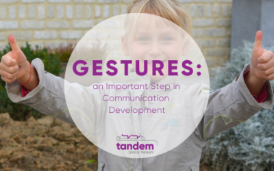 Gestures: an Important Step in Communication Development
