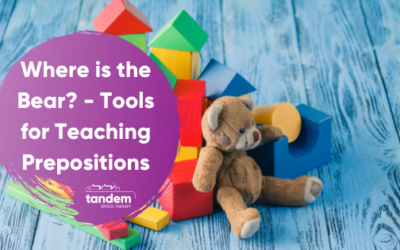 Where is the Bear? Tools for Teaching Prepositions