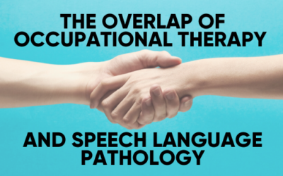 The Overlap of Occupational Therapy and Speech-Language Pathology